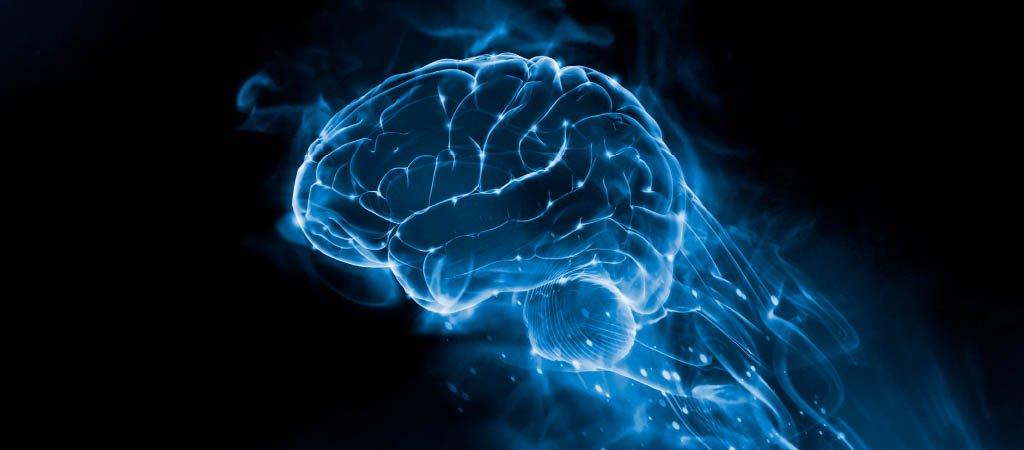 Inside Beethoven's Brain - SummerFest 2020 Off the Hook Arts